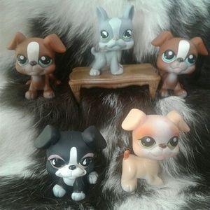 Hasbro Other - Littlest Pet Shop Boston Terrier Cream